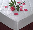 Cotton Bay Mattress Pads, Protectors, and Toppers