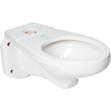 American Standard Glenwall Elongated Toilet Bowl Ada